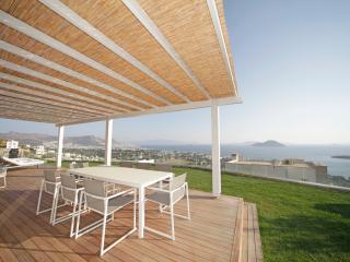 Özel sonsuzluk havuzu ile çarpıcı Deniz Manzaralı Villa, Turgutreis