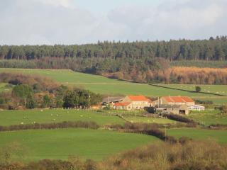 Primrose Cottage located in Harwood Dale, North Yorkshire, Ravenscar