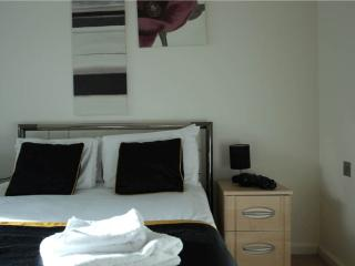 Magnificent 1 Bed Apartments in South Quay, London