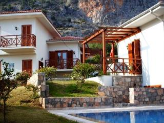 Gocek Rental Villas