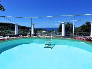 The beautiful villa! - V738