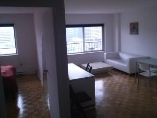 Excellent Apt next to McGill, Montreal