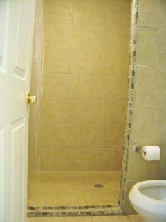 Large walk-in shower bathroom
