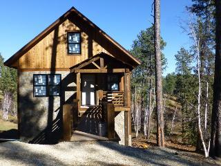 Gold Camp Lodge - new listing!, Lead