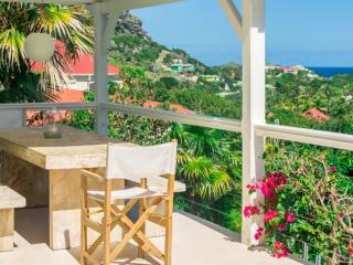 Luxurious villa with pool & sea views, Gustavia