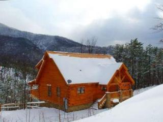 Secluded log cabin with a Million Dollar view, Pigeon Forge