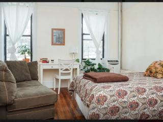 Prospect Park 2BD sleeps 6, Brooklyn