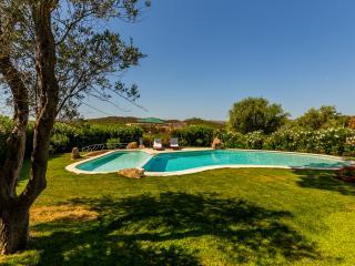 Villa immersa in un grande giardino con piscina