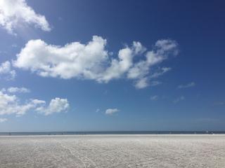 Escape to Our Florida Home!, Bradenton