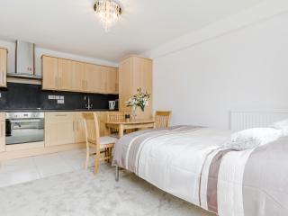 Quintessential Studio Apartments - Whole House, London