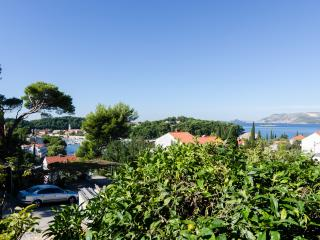 Apartment Stjepko-Two-Bedroom Apartment with Balcony and Sea View, Cavtat