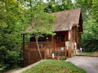 Cabin minutes from the all tourist attractions, Pigeon Forge