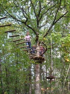 Nearby tree park