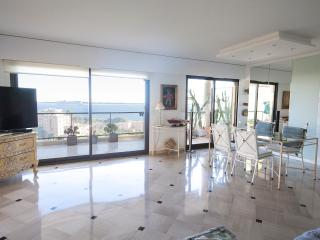 Penthouse with huge terrace and beautiful seaview, Cannes