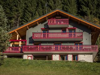 Luxury Chalet Les Alpes with hot tub, Châtel, Chatel