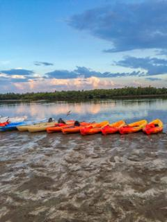 Tigertail Public Beach offering Kayak rentals