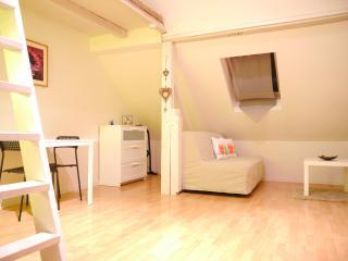 le lierre: joli meublé avec mezzanine au calme
