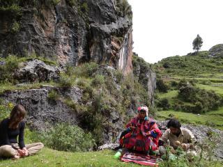 The Healing Tree Center - Ayahuasca Retreats