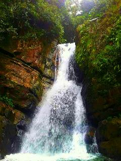 near to El Yunque  National Forest ( turist landmark)