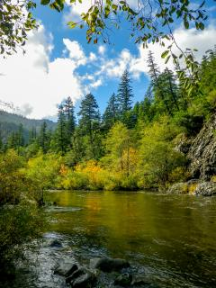 Only a 10 minute walk or 2 minute drive to the Smith River from The Cabin!