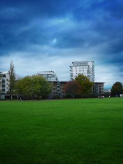 Bartlet park – opposit the development
