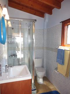 Ground floor WC with shower cabin.