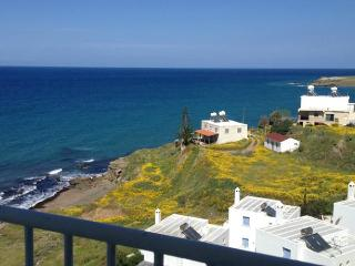 2 Bedroom Apartment with sea view in Pachyammos