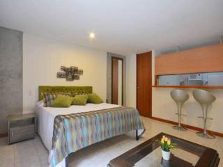 Nice studio apartment in Patio Bonito, El Poblado, Medellin