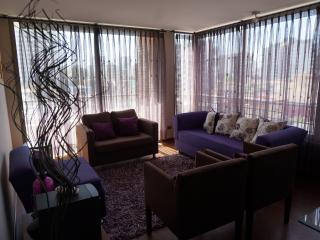 Comfortable apartment 3 Rooms and 2 Bath for 6 pax, Vina del Mar