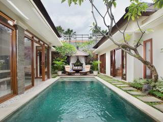 3 beds Seminyak Holiday Villa