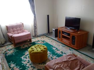 Luxurious Furnished Apartment. Full Utility, Nairobi