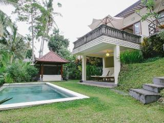 Two Bedroom Tropical Private Villa Ubud