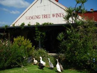 Hanging Tree Wines