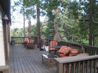 LLoyd ~ RA62610, Twin Peaks