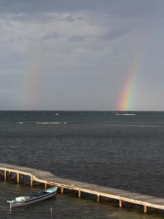 Stunning rainbows