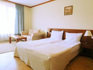 Studio Apartment in 4* Hotel 'Sveti Ivan Rilski', Bansko