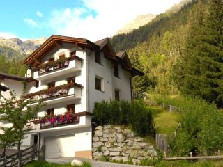 Great House in the Tyrolean Alps / fireplace/ WIFI
