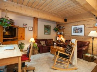 ON THE RIVER for couple or solo! Ski Vail Condo~ All you need for epic trip~ FREE Vail Bus out front