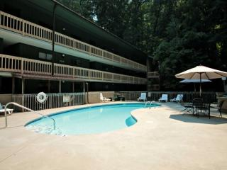 Couples Retreat!  By the Stream with Wooded Views - Jacuzzi Tub - Community, Gatlinburg
