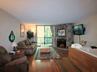 Couples Retreat! Stream w/ Wooded Views, Jacuzzi Tub, WiFi, 1.5 miles to Ski Res
