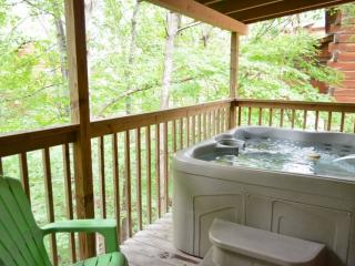 *Free Fun/See Below* Dances w/Wolves-HotTub -WiFi-Jacuzzi-1 mile to Pkwy in Pige