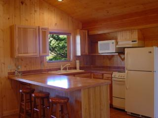 Fully-equipped Kitchen With microwave & breakfast bar