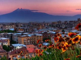 Welcome to Zebra Art Hostel in Yerevan!