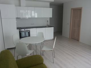 Apartment near the centre, Vilnius
