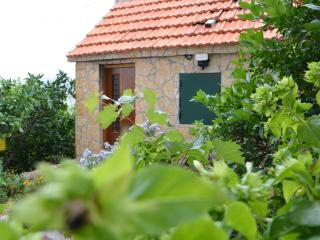 House Jasminka, Marina