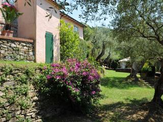 Charming country villa, Jacuzzi pool, Sauna, A/C, few mins beaches & 5 Terre