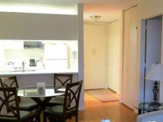 Furnished 1 Bedroom Condo Unit in Downtown - Battery Park City, Nueva York