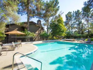 Furnished 2-Bedroom Condo at Brittan Ave & Crestview Dr San Carlos