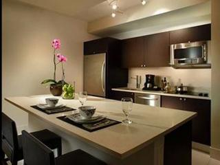 Luxury Condo in the Heart of Miami (E) - Near airport, malls, restaurants, minut