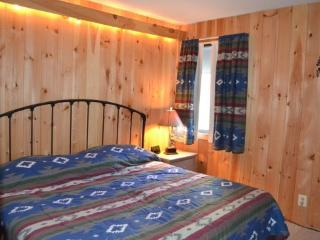 Whiffletree Condo B4 - One bedroom One bathroom Shuttle To Slopes/Ski Home, Killington